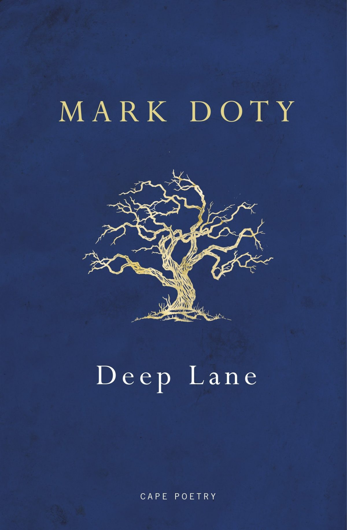 From My Poetry Bookshelf – Mark Doty